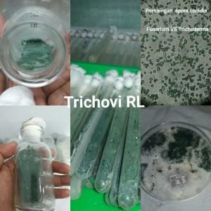 tricho1121